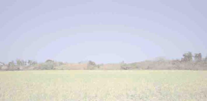 經典金門-經典金門系列照片之05
