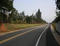 東洲路段拓寬道路及鋪面完工後照片