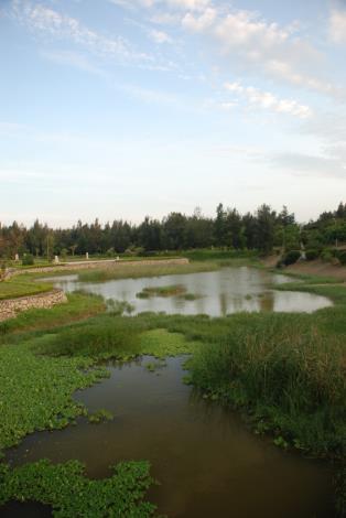 豐富的水中植物,偶有花嘴鴨於湖面上悠遊,在這裡不僅可以欣賞到優美的風景,又兼具生態保育對我門的重要。