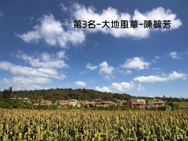 107年高粱攝影比賽第3名--陳毓芳