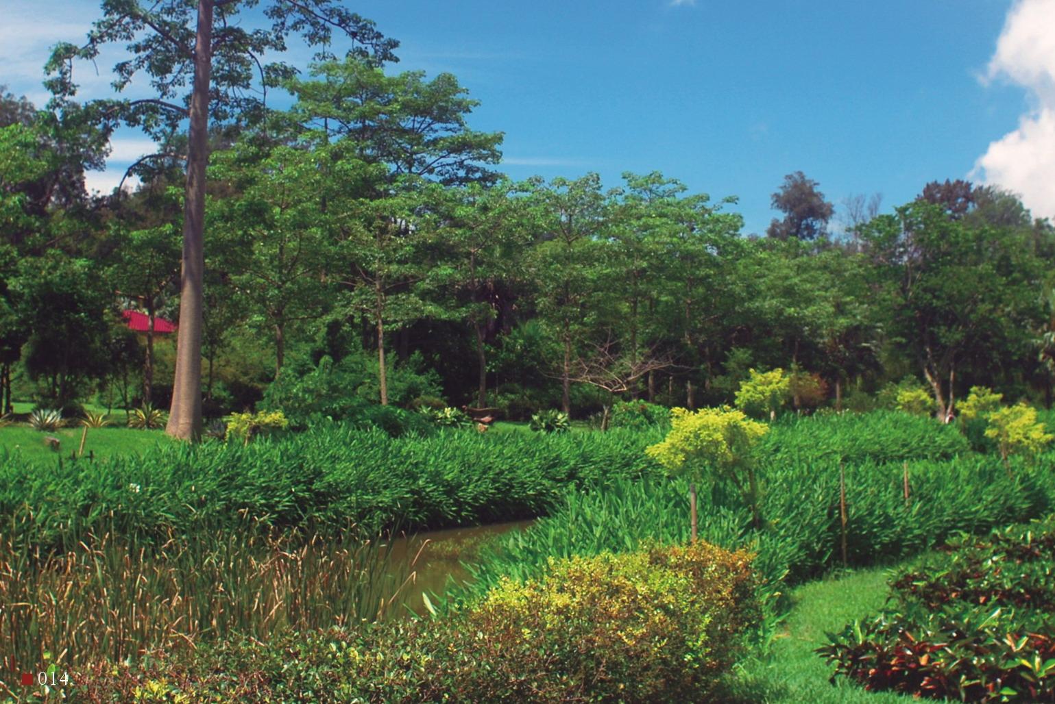 溼地生態與水生植物展示區