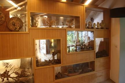 造林成果展示區之作品