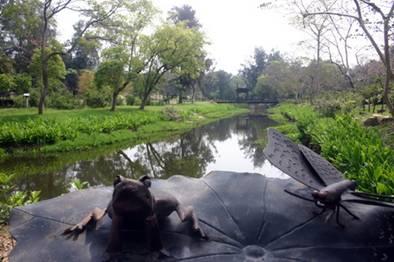 河道景觀區