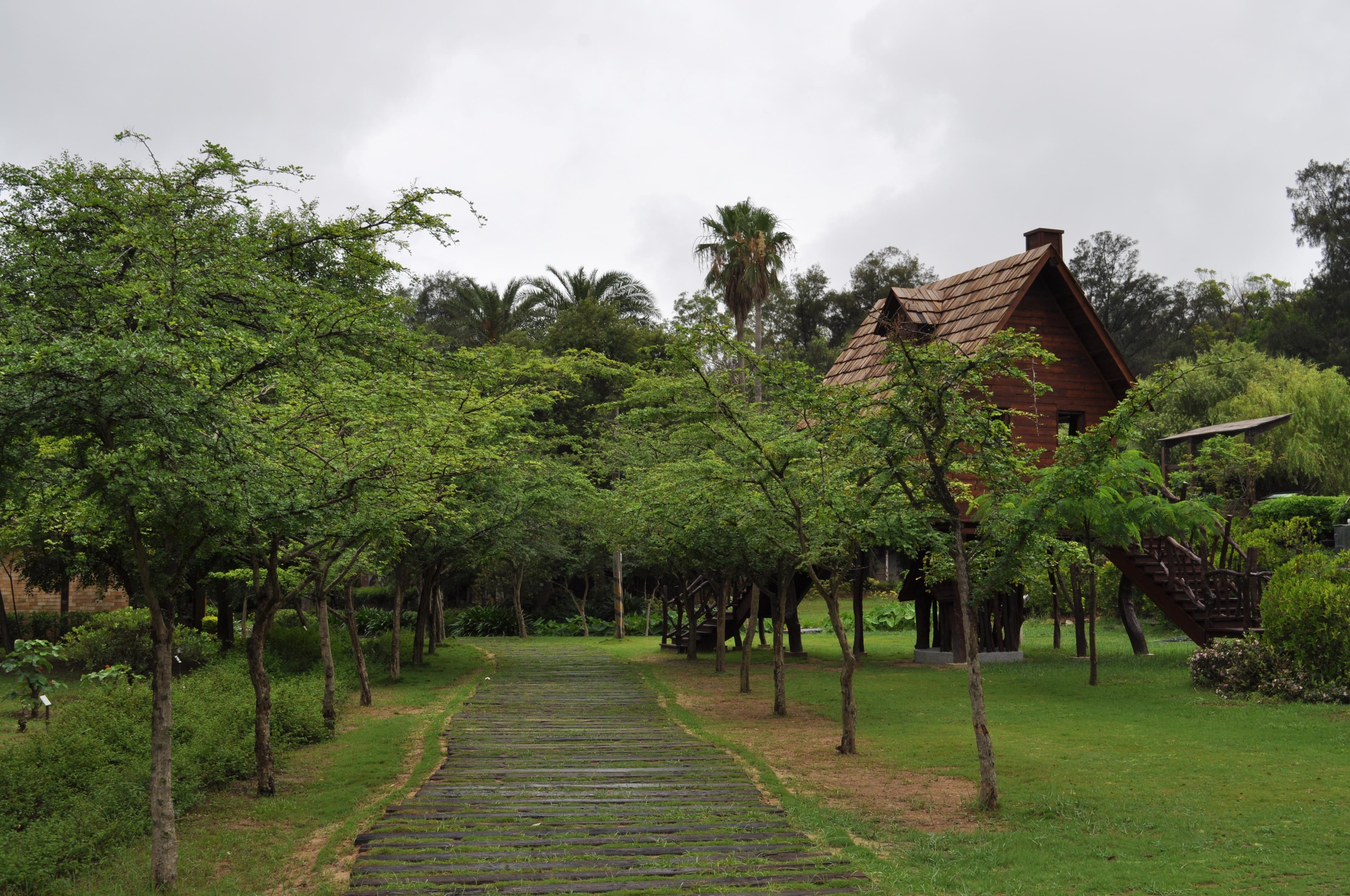 鳥木屋旁步道
