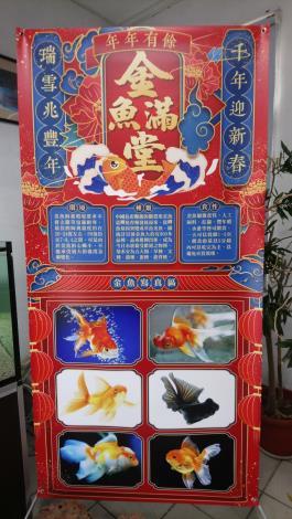 金魚滿堂水族特展