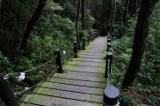 五虎山步道