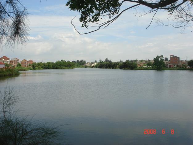 金寧鄉公所-雙鯉湖景一.JPG