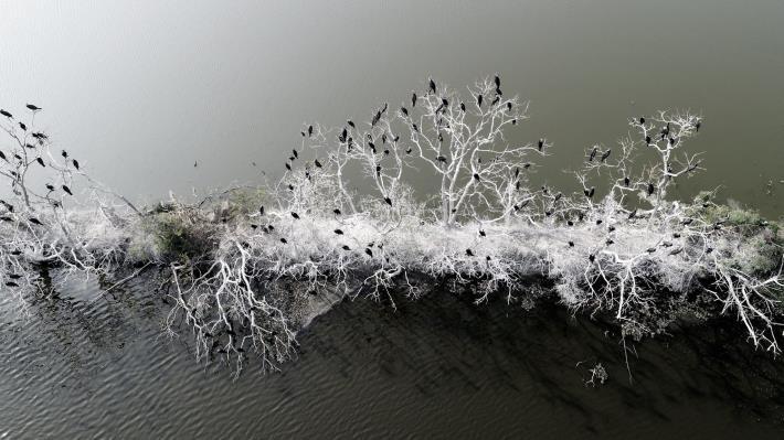 自然生態-許進西 (2)