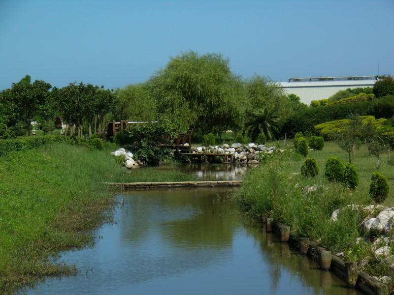 農試所-生態池照片