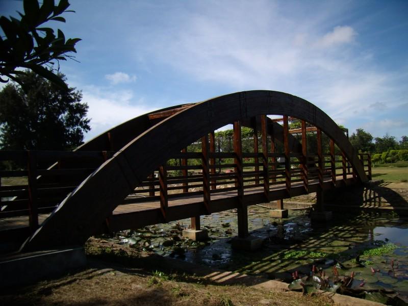 農試所-木橋照片